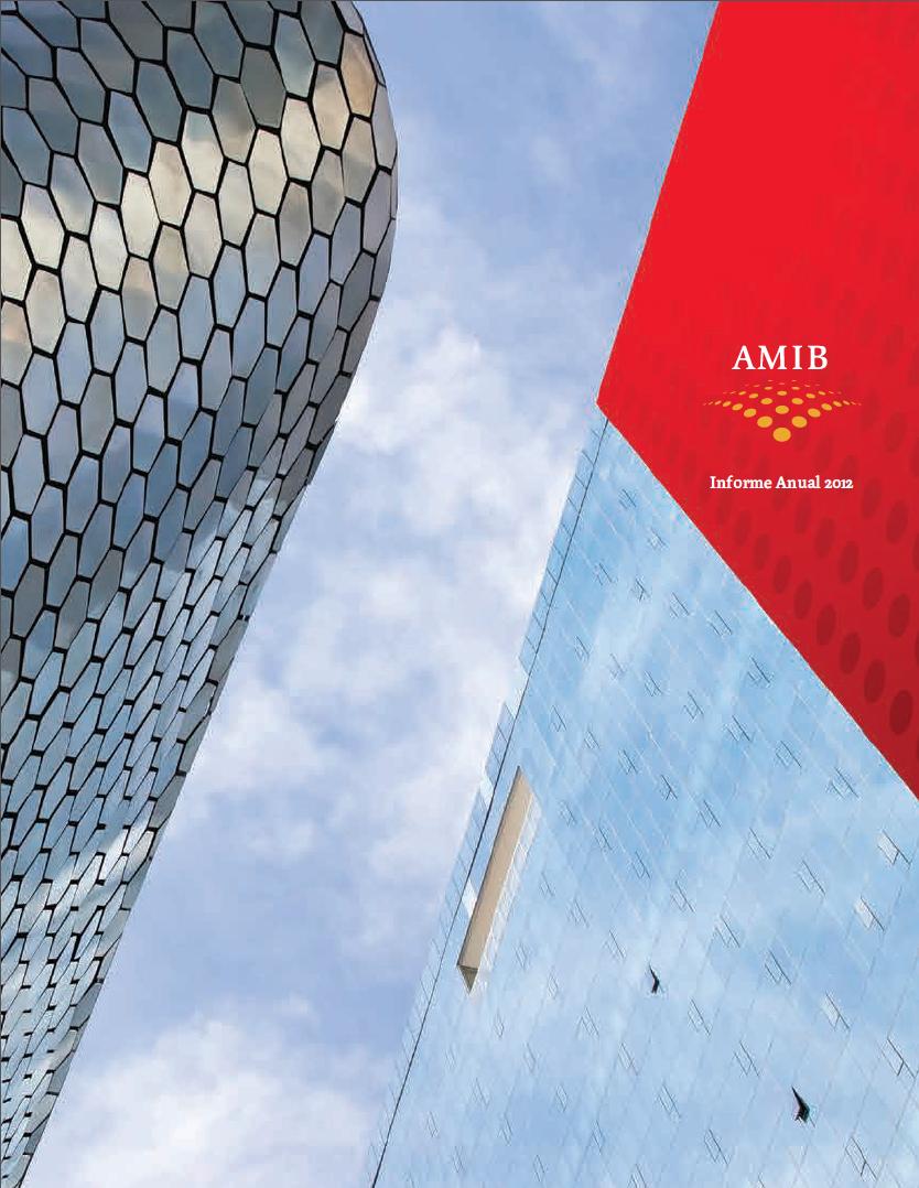 Informe Anual 2012